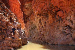 Roter Felsen, ein Wasserloch und ich