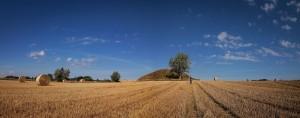 Getreidefeld & Steinzeitgrab in Dänemark