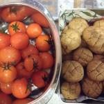 Tomatenernte (sic!) und #Weihnachtsbäckerei am 2. Advent. #tomaten #meingarten #sommer2018 #küchenschlacht